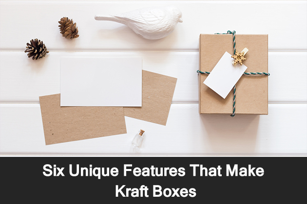 Six Unique Features That Make Kraft Boxes