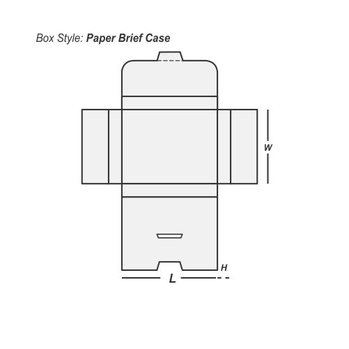 Paper Brief Case printing